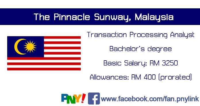 transaction processing analyst